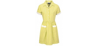 ayr_yellow_gingham_dress_st_martins_ps